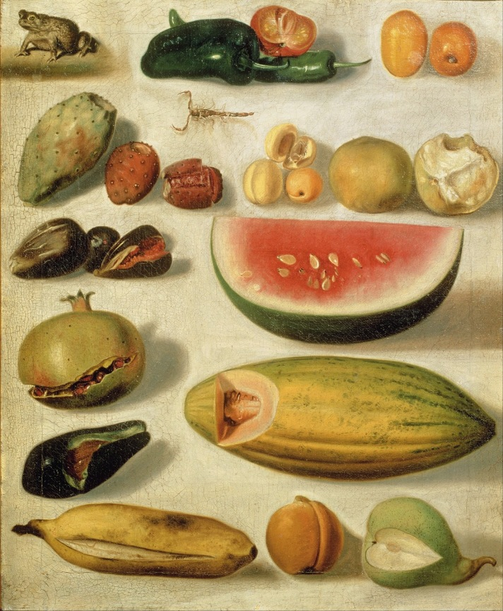 Hermenegildo_Bustos_-_Still_life_with_fruit_(with_scorpion_and_frog)_